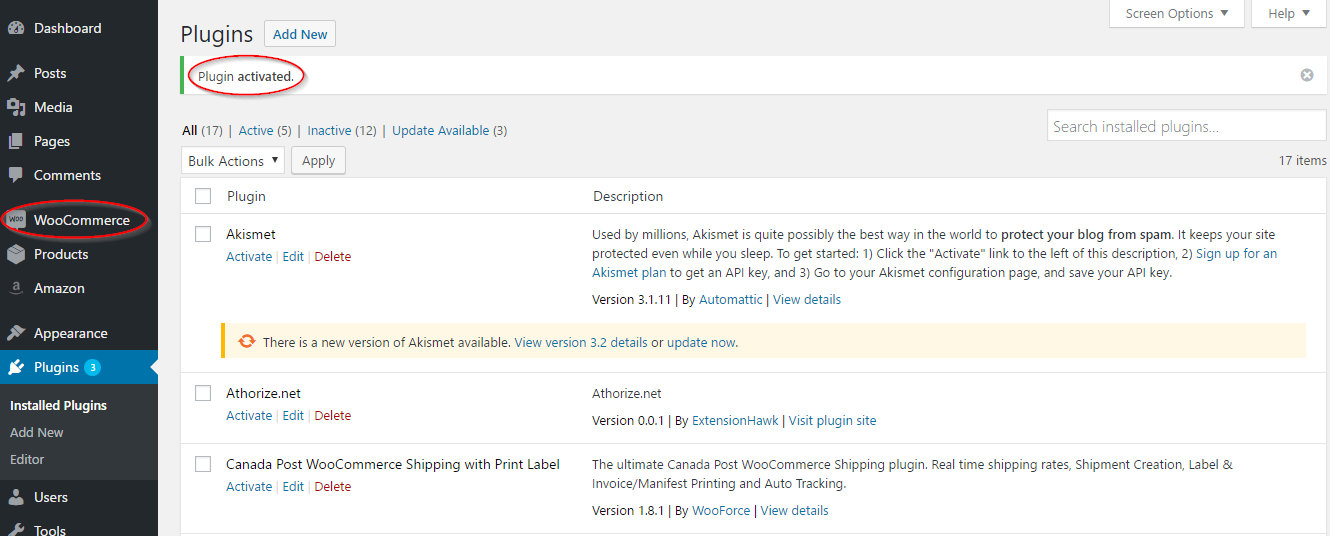 Completing WooCommerce activation